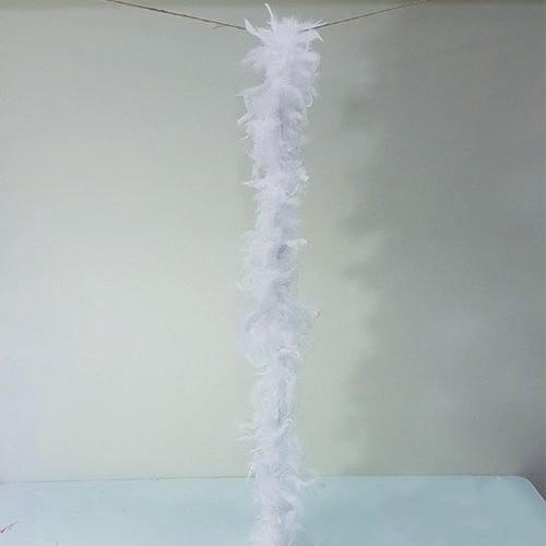 Beyaz Tüylü Otriş