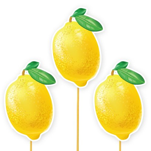 Limon Temalı Çubuklu Parti Aksesuarı 6 Adet, fiyatı