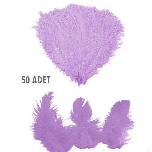 Lila Kuş Tüyü 50 Adet, fiyatı