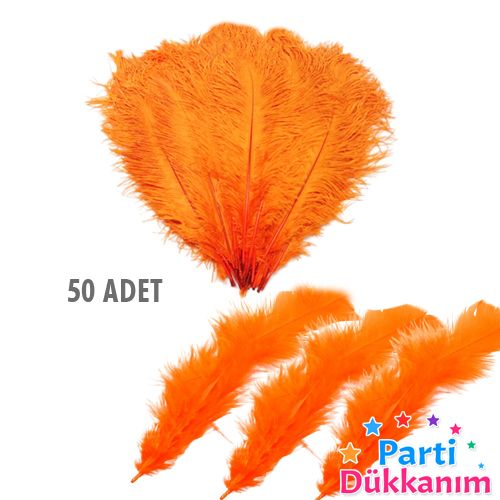 Turuncu Kuş Tüyü 50 Adet, fiyatı