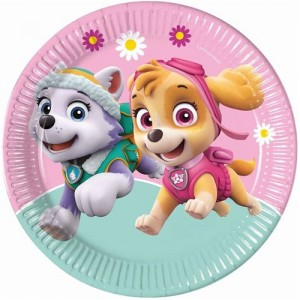 Paw Patrol Skye ve Everest