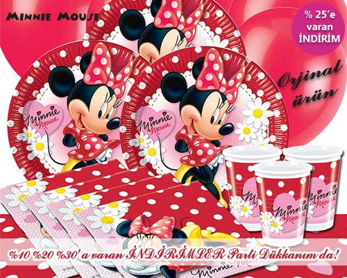 Minnie Mouse Daisies & Fashion Parti