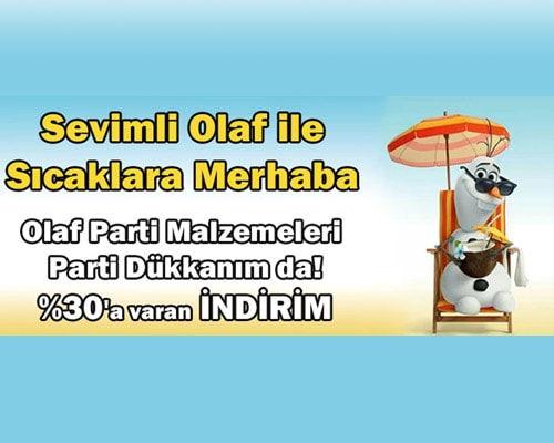 Olaf Summer Parti Malzemeleri