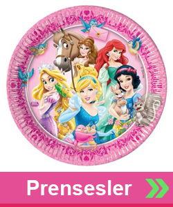 Prensesler Parti Konsepti